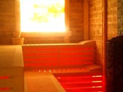 sauny 31