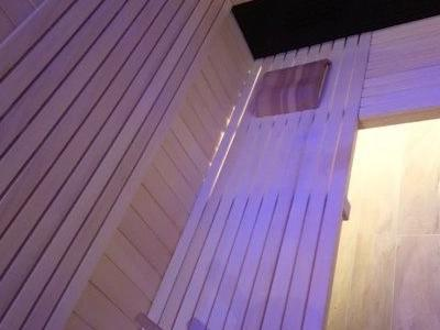 sauny 55